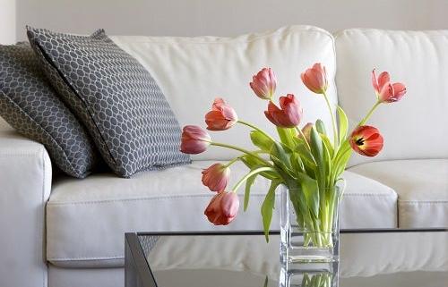 beneficios de flores